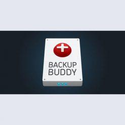 BackupBuddy v8.7.1.0